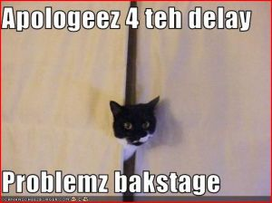Problemz bakstage - cat photo