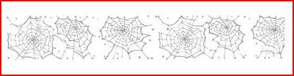 Web standard wheel