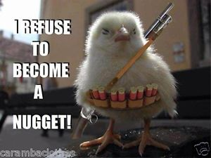 Refusing to be a Nugget!